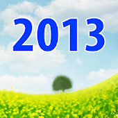 New Year Resolutions 2013