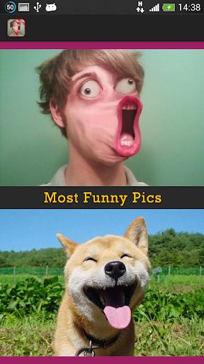 最も面白い写真