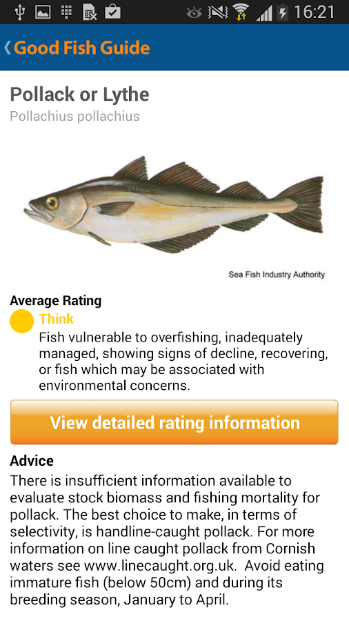 Good Fish Guide- screenshot