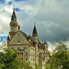 Schloss Neuschwanstein by Jacek Steplewski - Buildings & Architecture Public & Historical ( clouds, trees, castle, architecture, landscape )