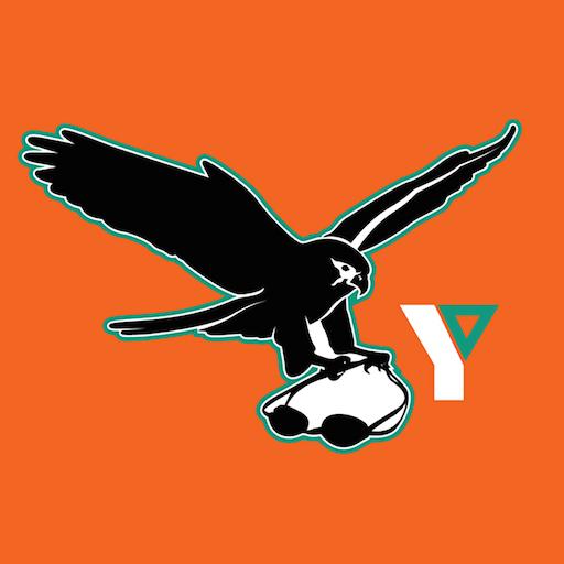 Flint Falcons LOGO-APP點子