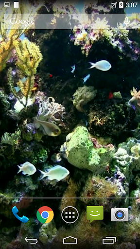 aniPet Aquarium Live Wallpaper v2.5 Apk | Apps2apk.com – Free ...