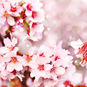 Pink Flowering Live Wallpaper icon