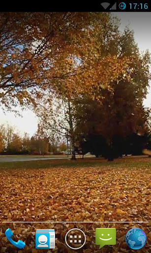 Falling Leaves Live Wallpaper2