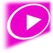 MP4 3GP AVI FLV Media Player