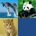 Animal Match Memory training icon