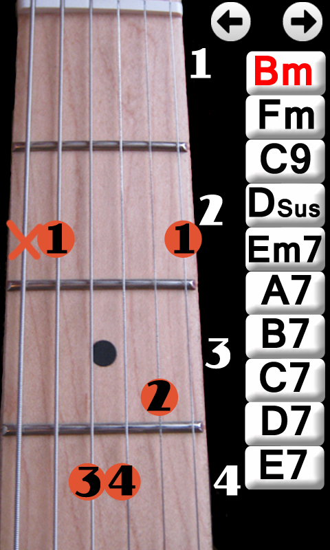 Learn Guitar Chords - screenshot