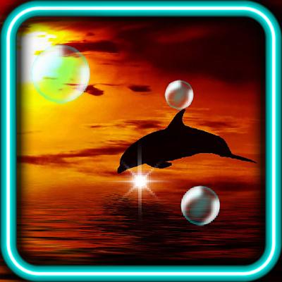 Дельфины Закат живые обои