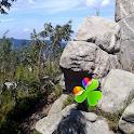 Go Launcher nature landscapes