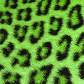 Green Cheetah Keyboard Skin