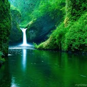 Nature Wallpapers-CG & Photos