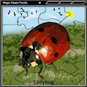 Magic Shape Puzzle 1 icon