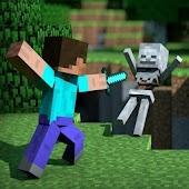 World of Minecraft