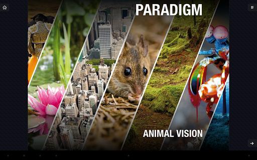 Animal Vision. Popular Science