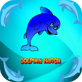 Dolphin Game for Kids
