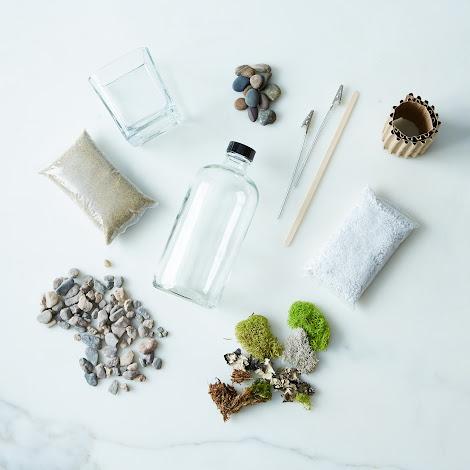 DIY Apothecary Moss Terrarium Kit
