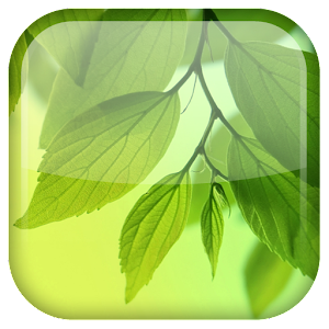 S4 Leaf Live Wallpaper for Android