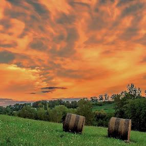 The Hay Bales II by Marcel de Groot - Landscapes Mountains & Hills ( orange, hills, green, hay, bales, landscape, golden hour, sunset, sunrise )