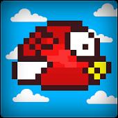 Dummy Bird