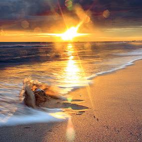 by Ciprian Nafornita - Landscapes Sunsets & Sunrises ( golden hour, sunset, sunrise )