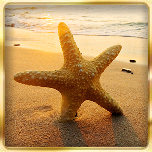 Ocean Beach : Hidden Object for PC and MAC