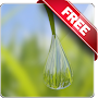 Water Drops Free livewallpaper APK icon