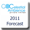2011 Rabbit Year Forecast logo