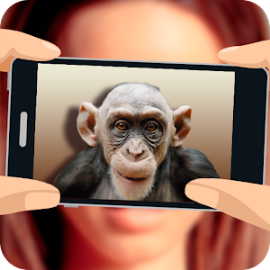 What monkey am I? for PC and MAC
