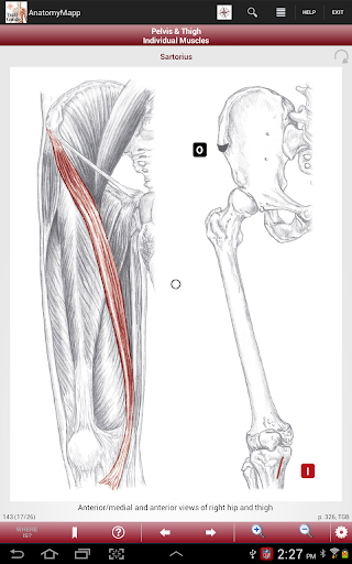 Anatomymapp Apps On Google Play