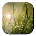 Galaxy Green Grass LWP icon