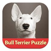 Bull Terrier: Find Differences