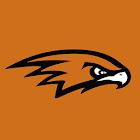 Ultrasonic Hawks icon