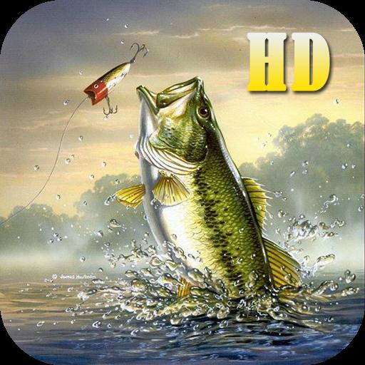 Fish Fishing Game 街機 App LOGO-硬是要APP