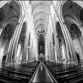 Cathedral by Sergio Moya - Buildings & Architecture Other Interior