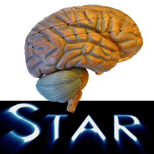 Anatomy Star - CNS (the Brain)