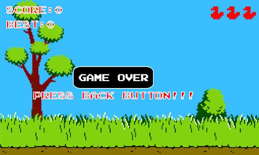 Duck Hunter screenshot