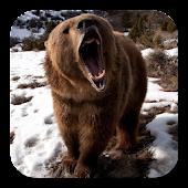 Brown Bear Live Wallpaper APK for iPhone