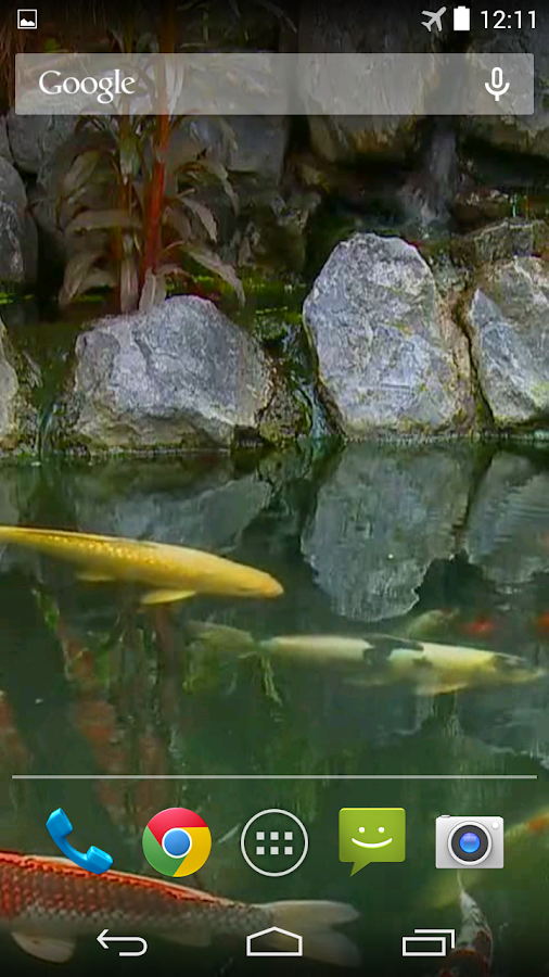 Koi pond video live wallpaper android apps on google play for Koi pond app