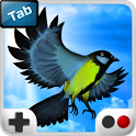 Bird Fly High 3D TAB icon