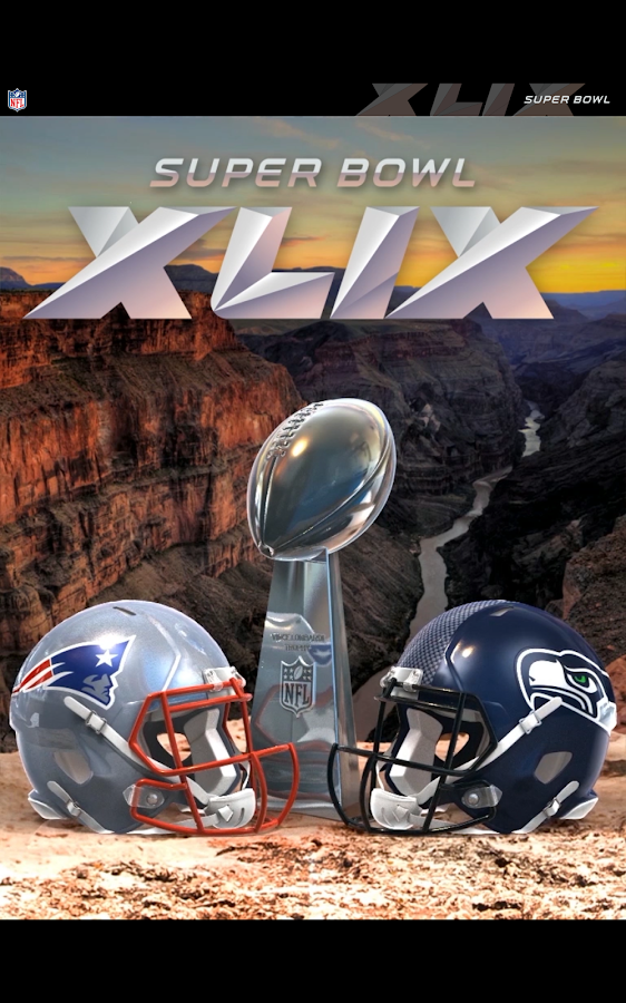 Super Bowl XLIX Game Program- screenshot