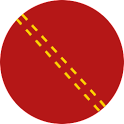 Duckworth-Lewis calculator logo