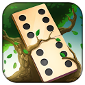 Domino Solitaire icon