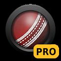 ExpressPace Pro logo
