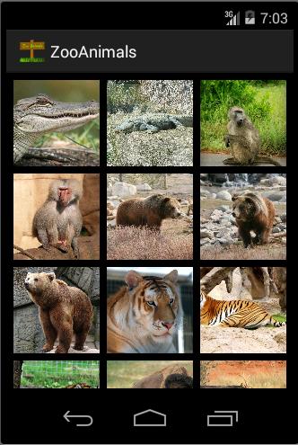 Zoo : Animal Photos Sounds