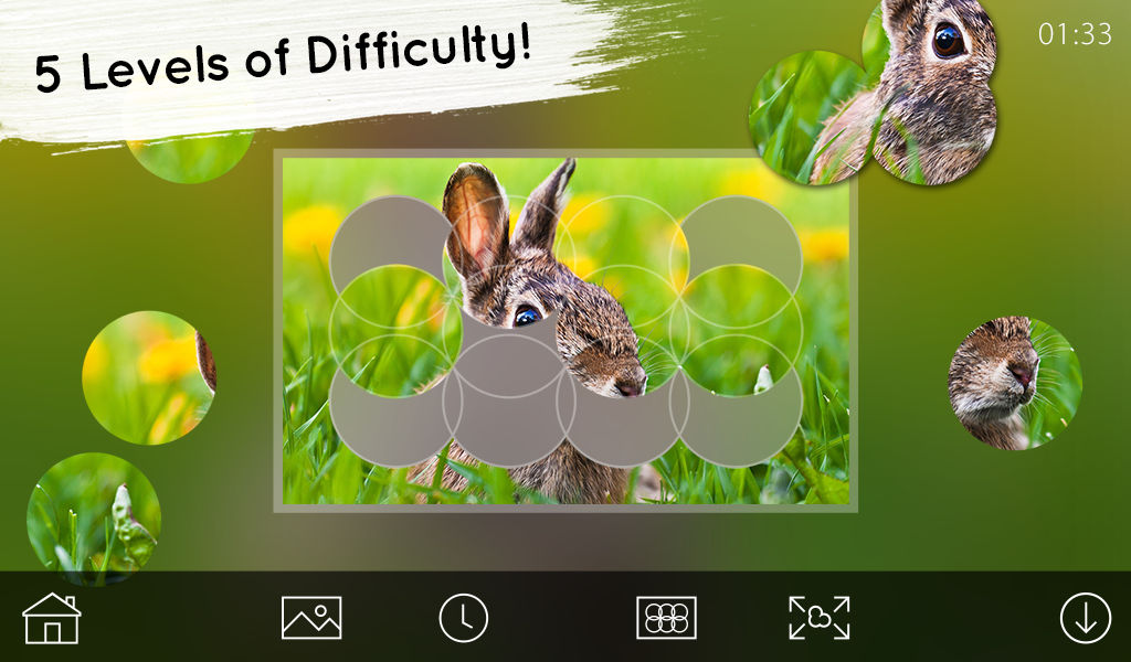 Venn Easter: Circle Jigsaw- screenshot