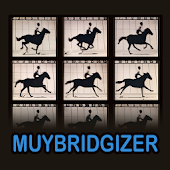 The Muybridgizer