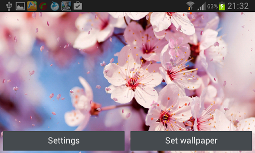 玩個人化App|櫻花動態壁紙免費|APP試玩