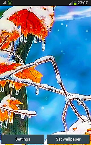Winter n Snowflake in LWP