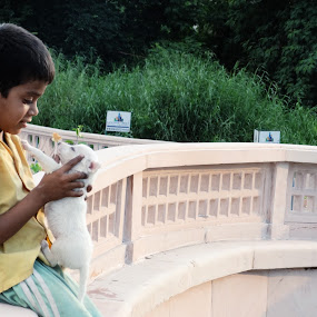 Alive Toy... by Ashwini Dey - Babies & Children Children Candids ( child, childern, toy, ashwini dey, puppy, candid, dog, photography )