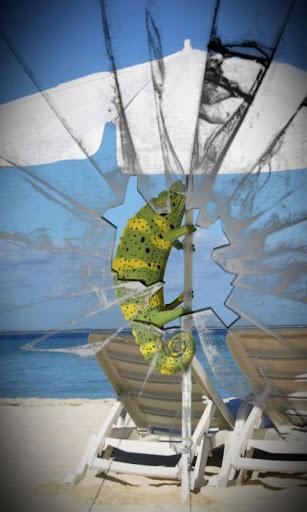 Beach chameleon live wallpaper